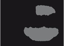 euphoria_logo_final